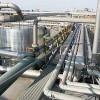 SUA cer Ungariei şi ţărilor vecine să respingă gazoductele ruseşti