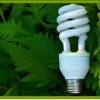 Peste jumătate din energia ţării este regenerabilă