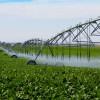 Apa gratuită a crescut suprafețele irigate