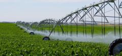 Lege pentru subvenționarea energiei electrice folosită la irigații
