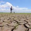 Pregătiri pentru declararea secetei