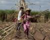 În Bolivia, copiii muncesc de la 10 ani