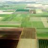Agricultura bio crește în ritm susținut