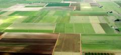 ADS scoate la concesiune alte terenuri către tineri fermieri