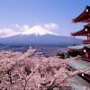Număr record de turiști în Japonia