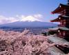 Japonia a intrat în recesiune