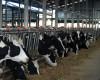 Vacile amenință eforturile privind încetinirea schimbărilor climatice