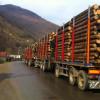 Liber la furat de lemn încă un an