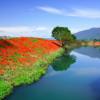 Lacurile ar contribui cu 20% la emisiile totale de metan
