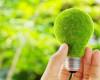 Irlanda ar putea rata obiectivele de energie regenerabilă pentru 2020
