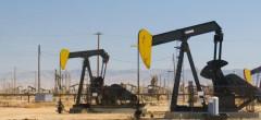 Cererea de petrol va scădea cu 8%, dar își revine în 2022