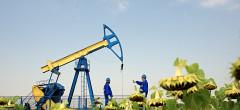 Scade prețul petrolului