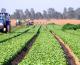 Sprijin pentru fermierii europeni