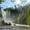Brazilia permite exploatările miniere într-o rezervație naturală