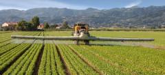 Noi reglementări la pesticide