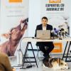 România trasă la răspundere pentru transportul oilor exportate