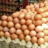 Mici mișcări de prețuri la alimente