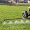 Sancțiuni pentru chimicale diluate