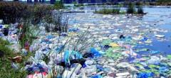 """În oceane sunt """"depozitate"""" 150 milioane tone de plastic"""