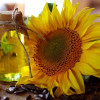 Marketing păgubos pentru ulei produs în Rusia
