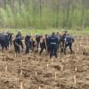 Record de voluntari la împăduriri