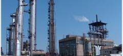 Combinatul Donalam împrumută 5 milioane euro de la BERD