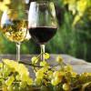 UE a exportat vin de 21,9 miliarde euro
