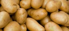 Cartofii şi citricele s-au scumpit cel mai mult