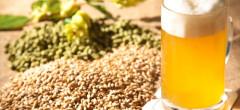 Piața locală a berii a ajuns la 16,7 milioane hectolitri