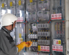 Delgaz Grid va monta 470 de echipamente telecomandate