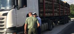 Orice furt de lemne din pădure se lasă cu dosar penal
