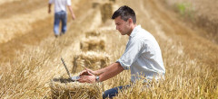 43 milioane euro pentru tinerii fermieri