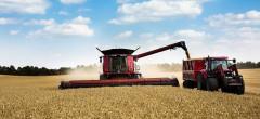 Rusia, principalul exportator de grâu al lumii