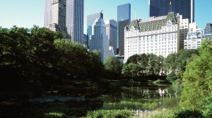 hotel-new york plaza central-park