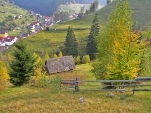 vacanta tara rural mediu agricultura