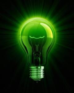 verde-bec